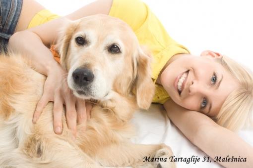 Paket za njegu srednjih i malih pasmina za samo 80kn umjesto 200kn  + 20% popusta popusta na korištenje usluge hotela za pse