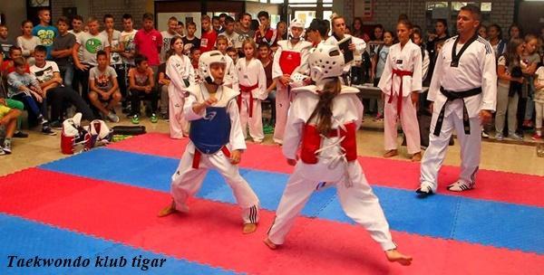 Taekwondo za školarce - mjesečna članarina