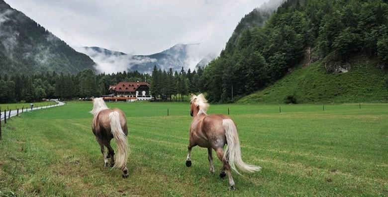 Logarska dolina i Mozirje - izlet s prijevozom za 169 kn!