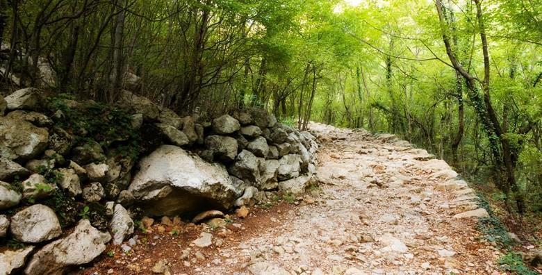 [NP SJEVERNI VELEBIT] Posjetite Kuću Velebita gdje ćete saznati zanimljivosti o parku uz šetnju botaničkim vrtom i posjet utočištu medvjeda - izlet za 169 kn!