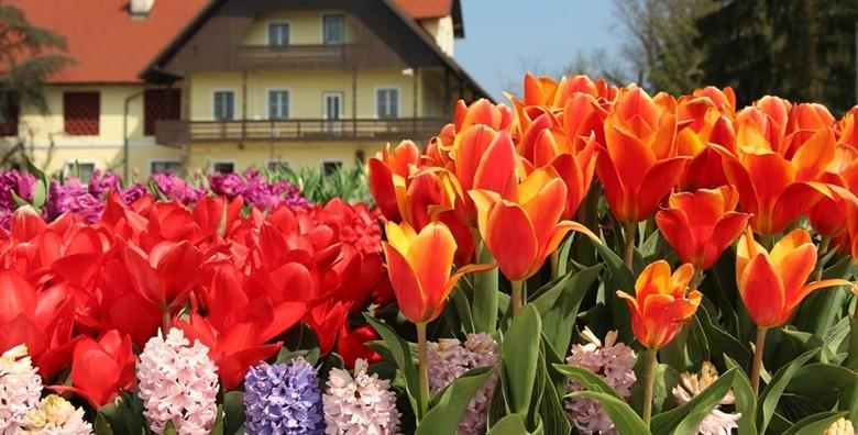 Volčji potok i Bled - uživajte na proljetnom sajmu i izložbi tulipana te na čarobnom slovenskom jezeru za 149 kn!
