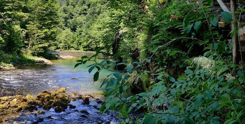 Dan ljekovitog bilja u Hribu - šetnja do izvora rijeke Kupe i NP Risnjak za 139 kn!