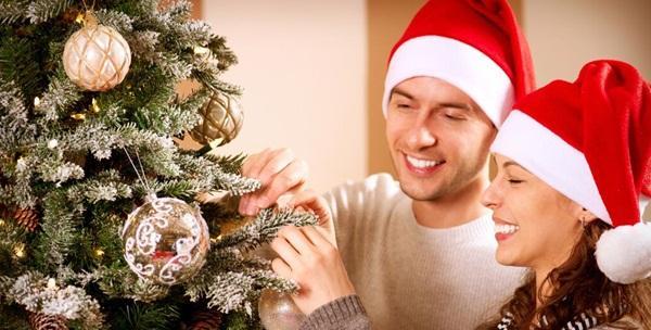 Božićno drvce u tegli - odaberite željenu visinu i vrstu