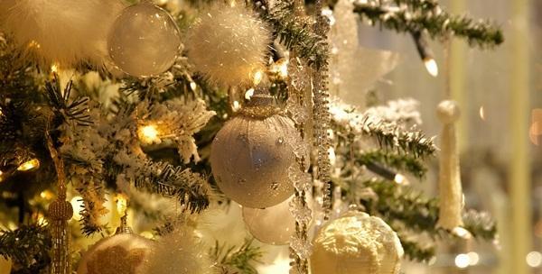 Božićna smreka visine 1,8m do 3m - mirisna tradicija blagdan