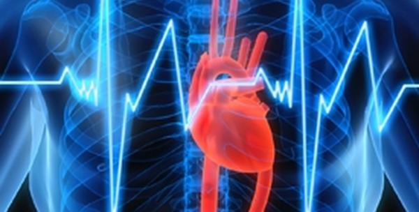Kompletan kardiološki pregled za 495kn