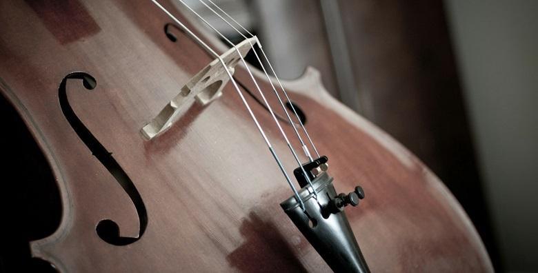 Tečaj sviranja električnog violončela - mjesec dana