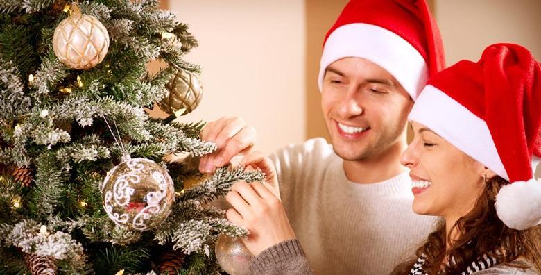 Božićna smreka u tegli visine do 60 centimetara