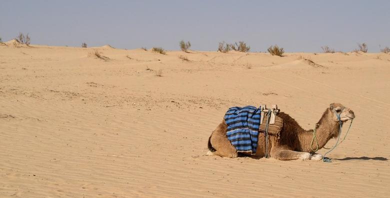 Tunis 3* - 7 noćenja s povratnim letom i pristojbama, all inclusive odmor od 2.909 kn!