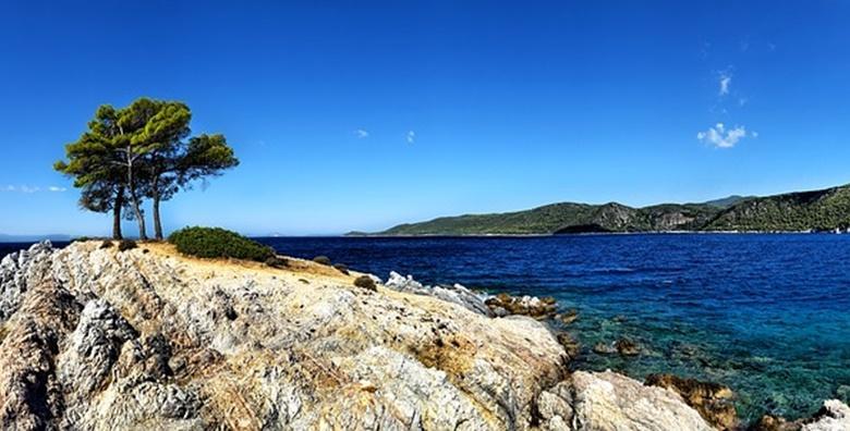 Ponuda dana: BIOGRAD NA MORU - obnovite energiju uz miris borova, kristalno čisto more  i udobnost koju nude apartmani Vile Adriatic od 1.199 kn! (Vila Adriatic)