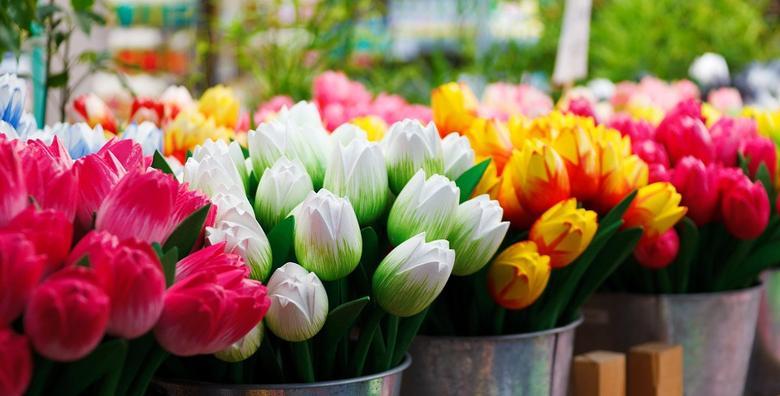 Italija - posjetite gradiće Conegliano i Porderone i uživajte u najvećem sajmu cvijeća koji će u vama probuditi proljeće za 220 kn!