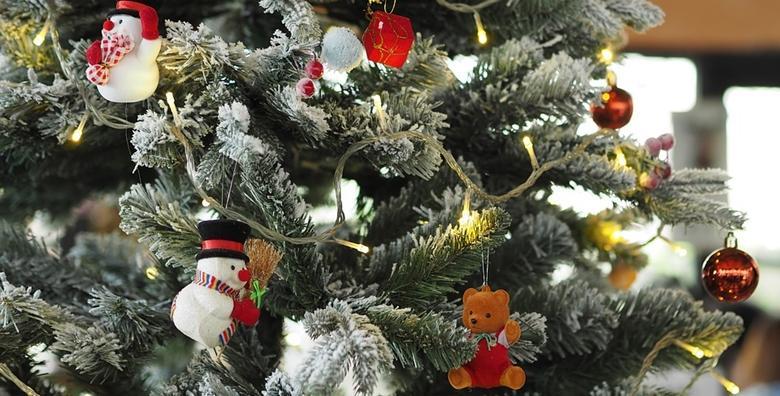 Božićno drvce - ukrasite dom sa Silber smrekom visine od 120 do 240 cm već od 120 kn!