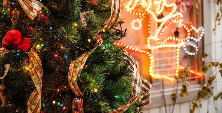 Božićna drvce - Pančićeva omorika visine 1,2 do 3 metra od 65 kn!