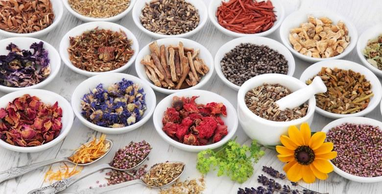Online tečaj o korištenju ljekovitih biljaka za samo 39 kn!