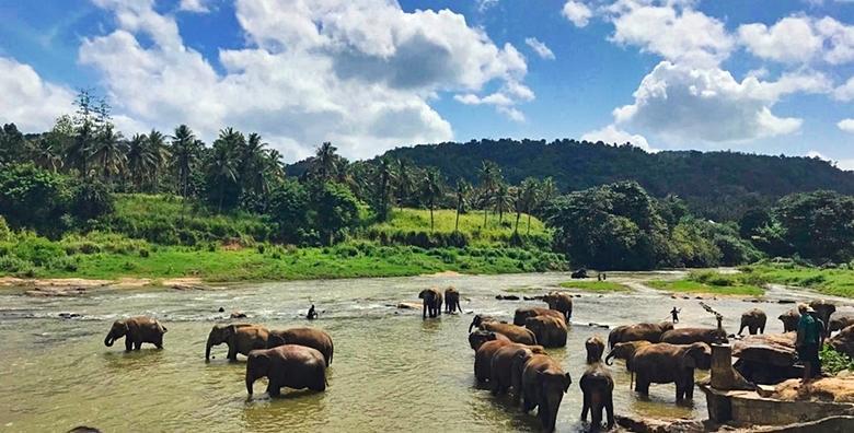 LAST MINUTE Šri Lanka**** - 7 noćenja s polupansionom i povratnim letom za 7.950 kn!