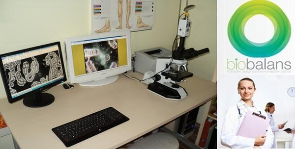 Mikroskopska analiza žive krvi + stručna preporuka