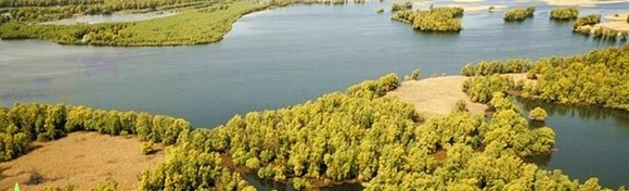 [KOPAČKI RIT I OSIJEK] Doživite proljetno buđenje flore i faune u jednoj od najvećih prirodnih močvara u Europi uz razgled dvorca Tikveš za 289 kn!