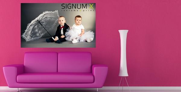 Foto na platnu dimenzija 60x50