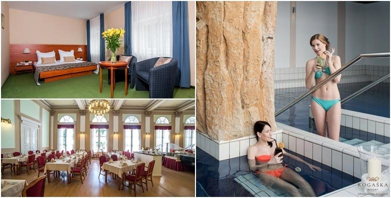 Wellness opuštanje u Grand Hotelu Rogaška 4* - 2 noćenja s polupansionom za dvoje uz besplatan ulaz u termalni bazen, saune, fitness i whirlpool za 1.176 kn!