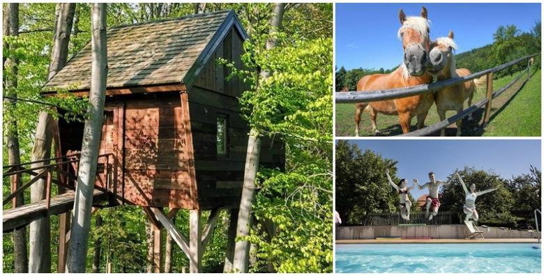 Ponuda dana: NA ŠKALUC Izaberite drugačije ljetovanje ove godine! Vanjski bazen na 650m nadmorske visine uz korištenje privatne finske saune već od 880 kn! (Na Škaluc***)