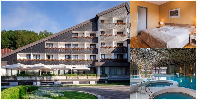 Terme Olimia - 4 noćenja s polupansionom za 2 osobe i popusti za djecu u Hotelu Breza 4* s neograničenim kupanjem u termama od 5.685 kn!