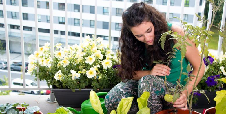 [VRTLARSTVO] Želite svojoj obitelji osigurati organske proizvode bez pesticida? Iskoristite priliku i naučite sve o uzgoju hrane u malim prostorima za 35 kn!