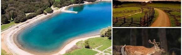 NP BRIJUNI - 2 noćenja s polupansionom za dvoje u Hotelu Istra 3* uz uključene  ulaznice za nacionalni i Safari park za 1.356 kn!