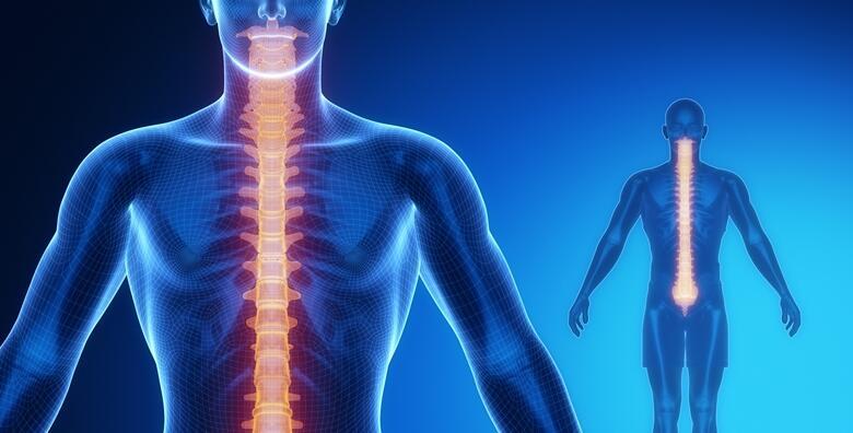 Paket Schroth vježbi - za korekciju krivina kralježnice u trajanju 45 minuta u Centru fizikalne medicine i rehabilitacije Preventis za 600 kn!