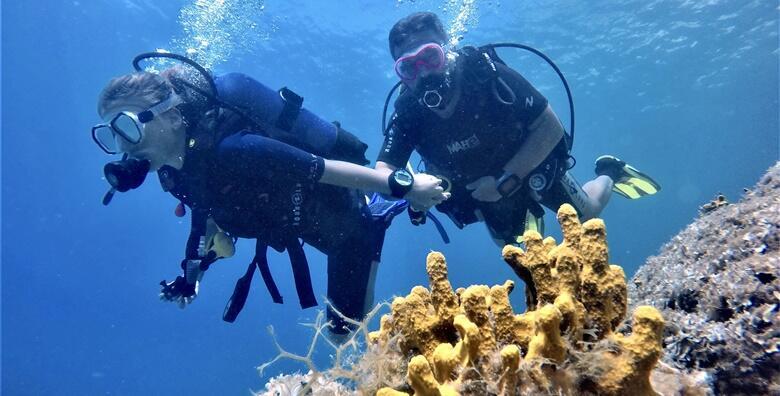 SCUBA DIVING – istražite morske dubine uz zarone s broda za početnike popraćene podvodnim fotografijama i videozapisima uz More Sub Makarska za 750 kn!