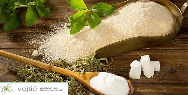 Sušeni listići stevije - 40 grama