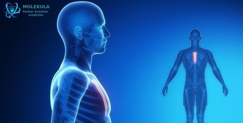 Detaljna kvantna analiza - pregled svih organa i sustava za 1.500 kn!